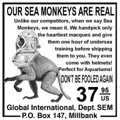 seamonkeys.png